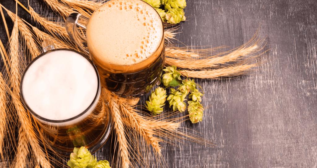 IBU: conheça mais sobre a escala de amargor da cerveja 1
